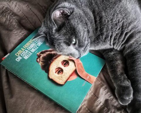 Joyce e il libro di carla fiorentino, cosa fanno i cucù nelle mezz'ore. Gatti e libri un binomio interessante